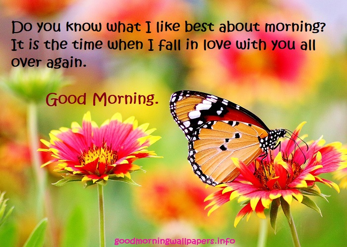 Good Morning Images with Quotes HD Photography Good Morning Nature