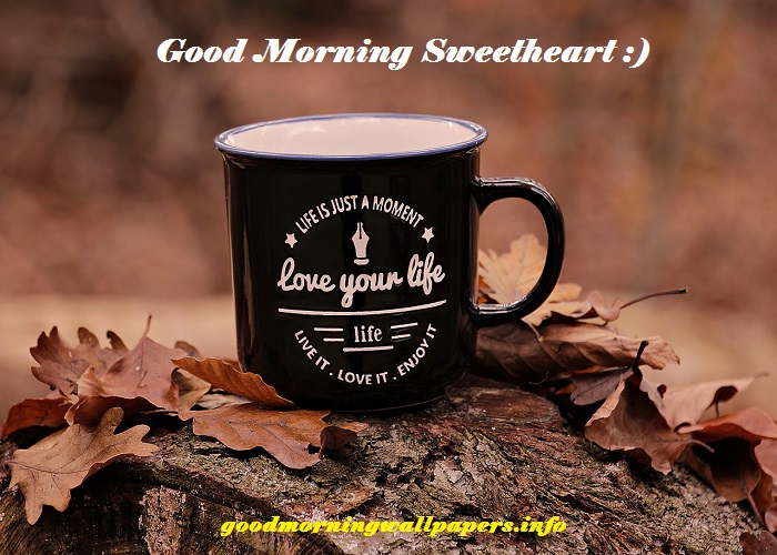 Good Morning Love Images hd 1080p Download