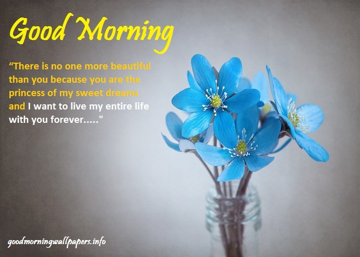 Good Morning Messages For Girlfriend in English