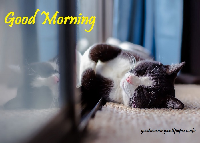 Good Morning Posters For Facebook