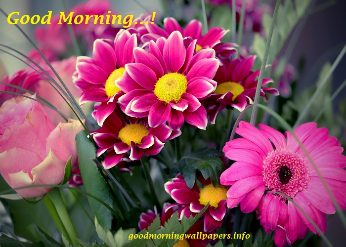 Good Morning Poster with Flowers