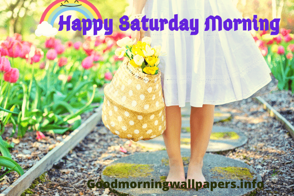 Happy Saturday Morning Image Wallpaper Free Download