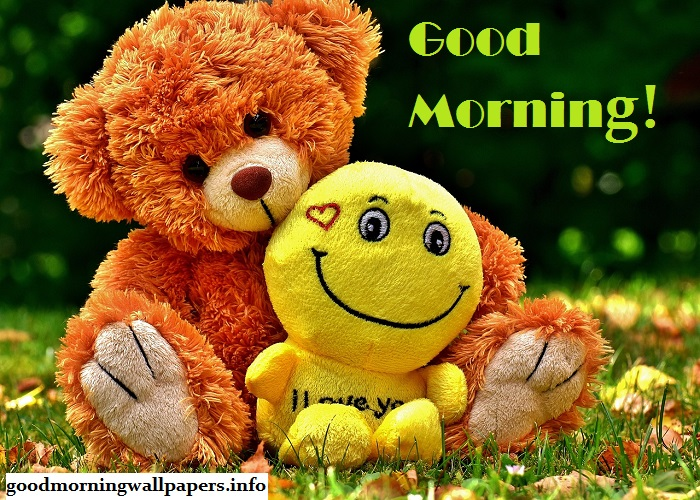Good Morning Cute Teddy Bear Pictures
