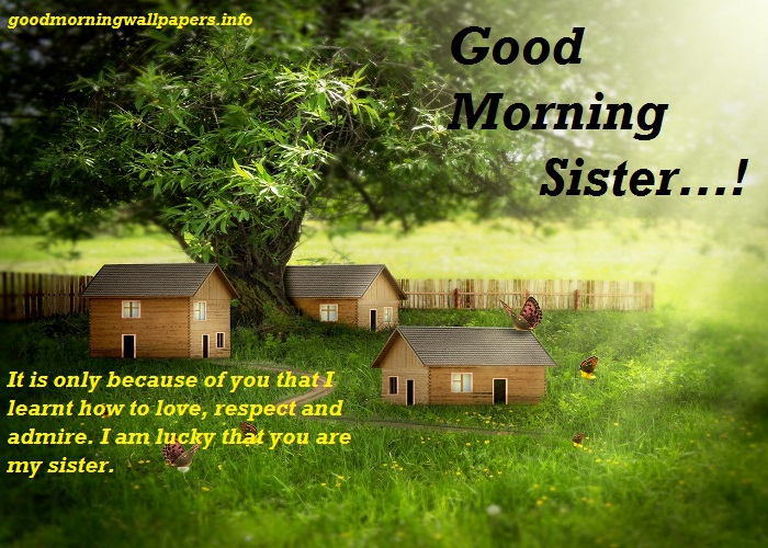 Good Morning Sister Quotes