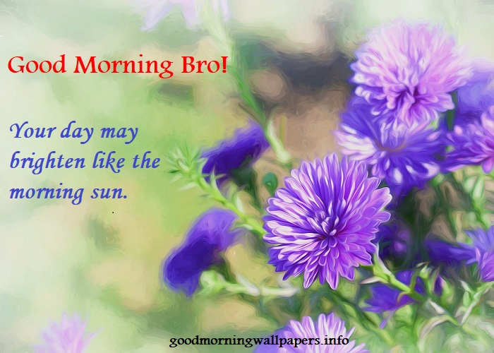 Good Morning Sweet Bro