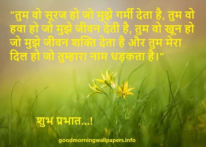 Good Morning Hindi Shayari Photo