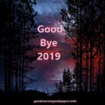 End of the Year quotes { Goodbye 2019 and Welcome 2020}