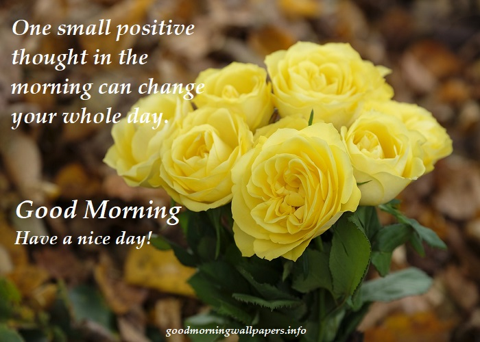 Good Morning Yellow Roses
