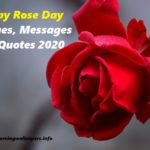Happy Rose Day 2020 {Messages, Wishes and Quotes}