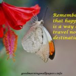 200+ Good Morning Butterfly Images {HD Butterfly Photos with Quotes}