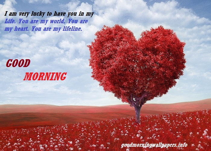 Good Morning Love Heart Images