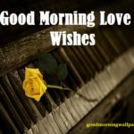 130+ Good Morning Love Wishes for Him and Her {Romantic Collection 2020}