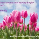 57 Spring Quotes with Images to bring Positivity in Life
