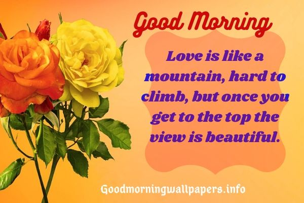 Cute Lovely Morning Have a Great Day Quotes for her