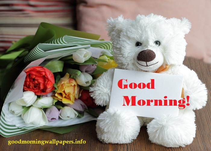 Good Morning Teddy Bear with Flowers