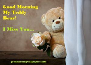 Romantic Good Morning Teddy