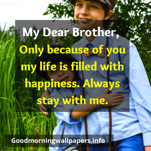Love you Good Morning Big Brother Quotes Messages