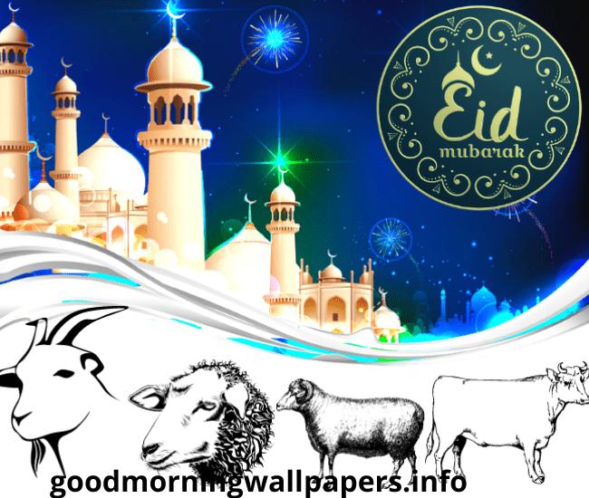 Bakra Eid 2021 Wishes