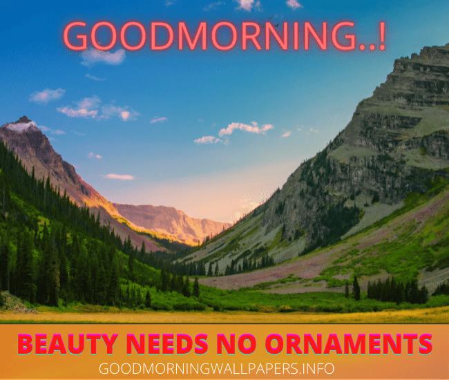 Good Morning Mountain View