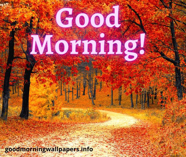 Good Morning Fall Sunday